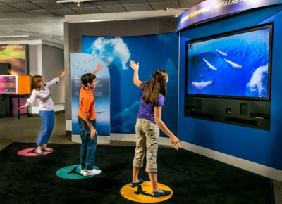 Kids experience flight as a bird through an avatar-based motion-capture experience at Boeing's Above and Beyond exhibit coming to Charleston next year. (Photo/Boeing)